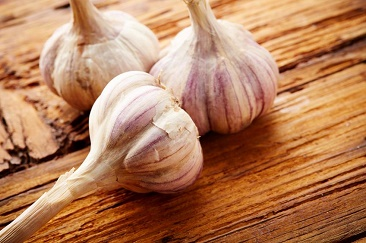 healing properties garlic